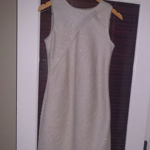 BANANA REPUBLIC Sleeveless Special Occasion Dress